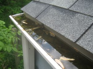Picture of How to Keep Leaves Out of Gutters
