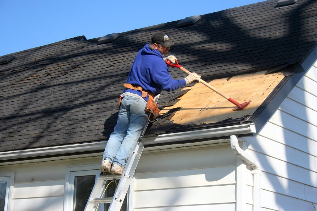 shingle-roof-contractors austin